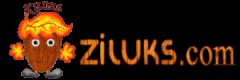 ziluks_logo
